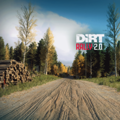 DiRT Rally 2.0 – Finland Rally Location