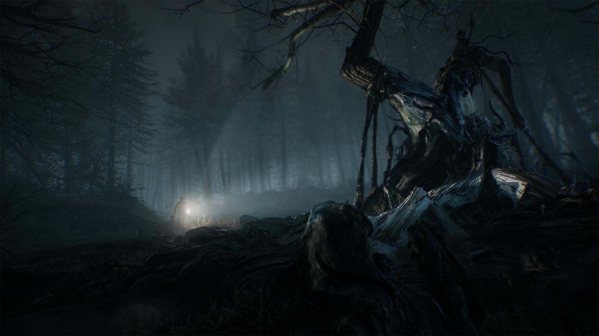 Скриншот №8 к Blair Witch
