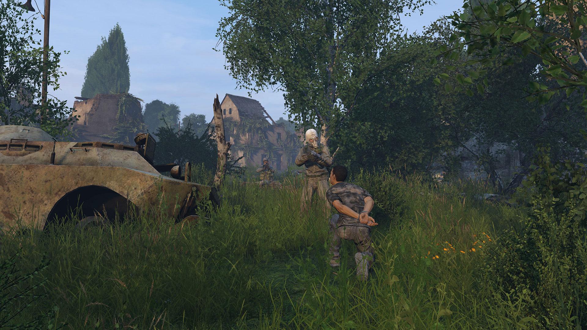 Скриншот №8 к DayZ Livonia