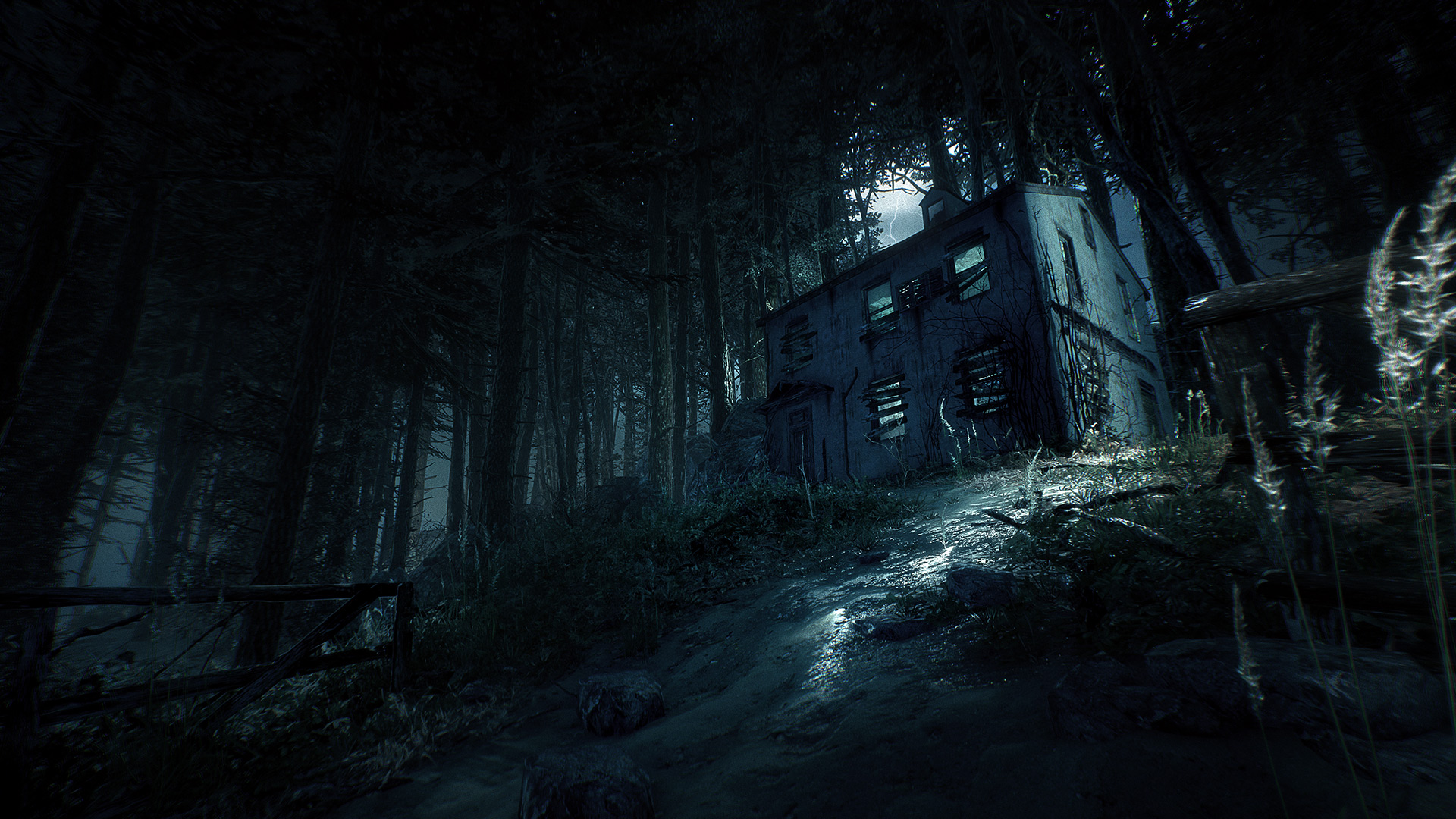Скриншот №9 к Blair Witch Deluxe Edition