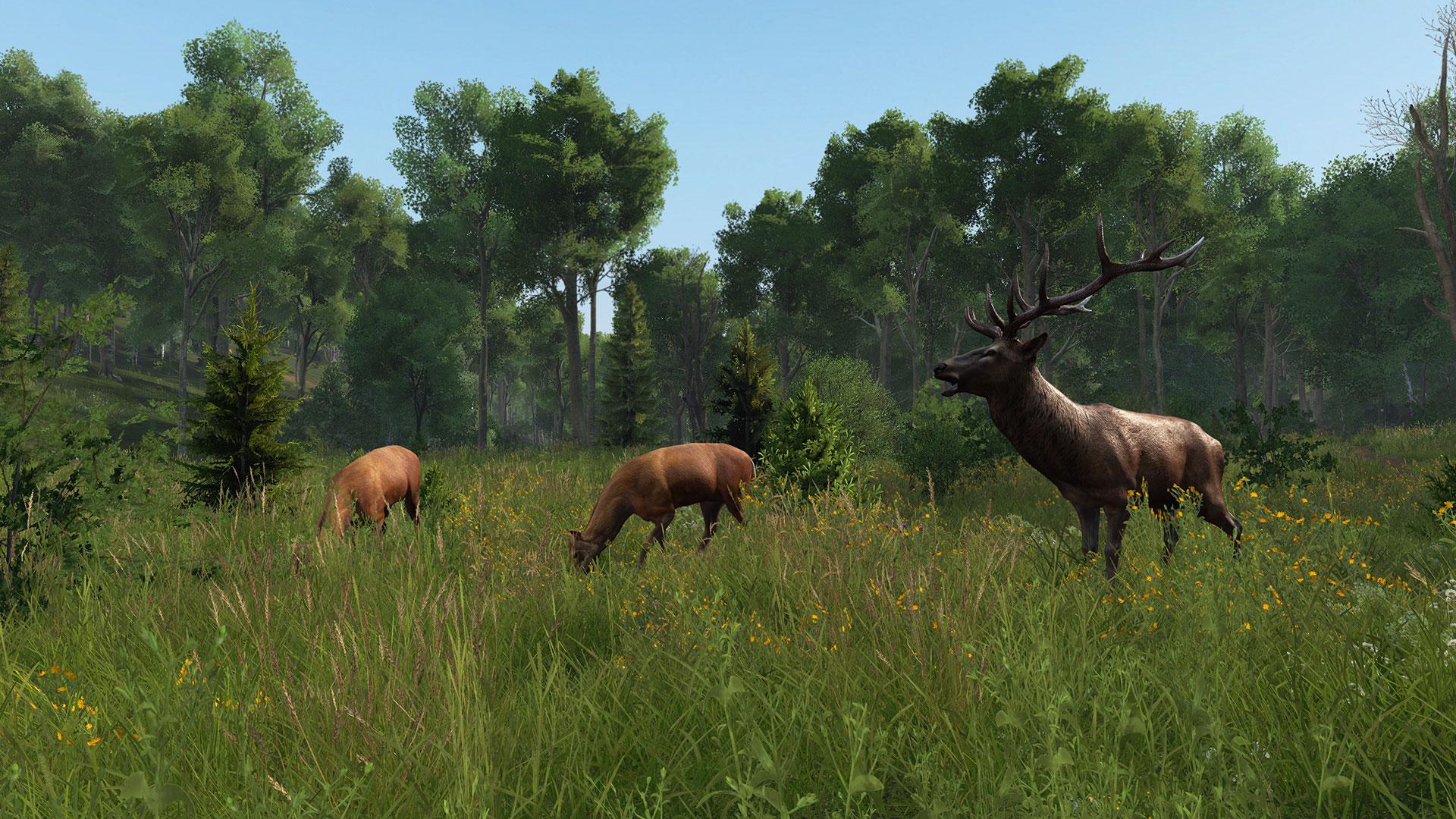Скриншот №2 к DayZ Livonia Bundle